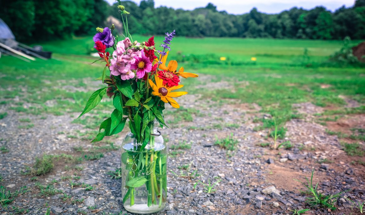 small bunch of farm flowers in vase at Suffield farm